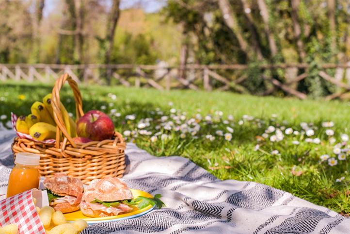 Je bekijkt nu De romantische picknick